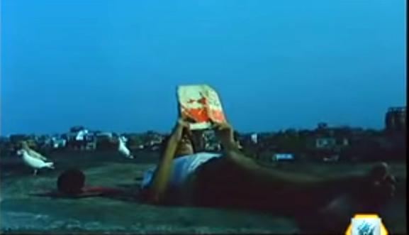 চিলেকোঠার ছাদে, নিজস্ব পৃথিবীতে, বইপাঠে মগ্ন হারবার্ট